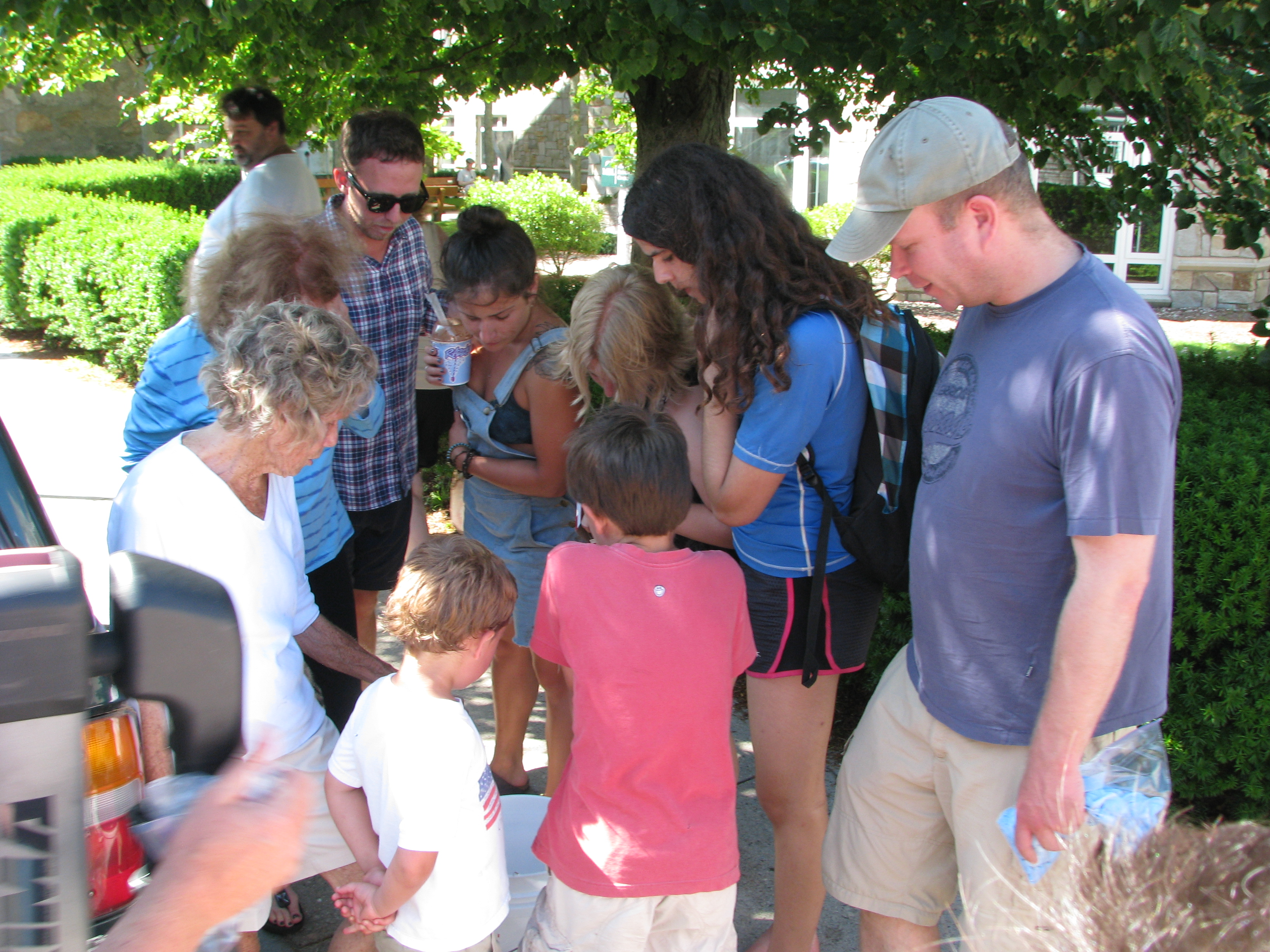 Our man-o-war-in-a-bucket generated a great deal of curiosity. Great opportunity for some impromptu science jamming!